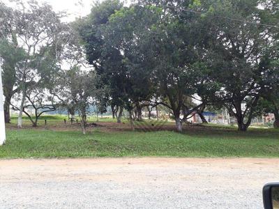 Terreno Em Alambari - Te5033