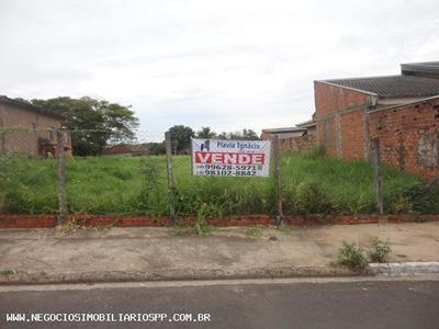 Terreno Para Venda Em Presidente Prudente, Distrito De Montalvão - 486719