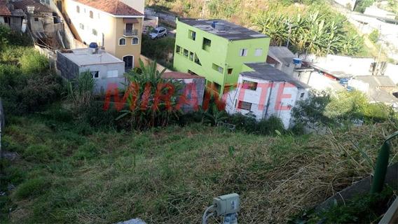 Terreno Em Lauzane Paulista - São Paulo, Sp - 295652