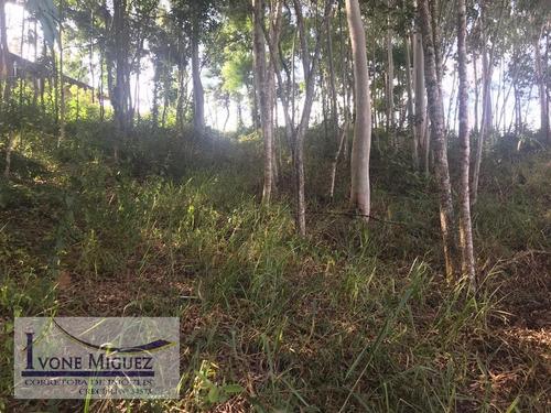 Imagem 1 de 4 de Terreno Em Recanto Dos Eucaliptos  -  Paty Do Alferes - 2968