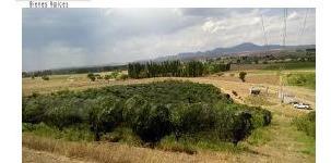 Imagen 1 de 7 de Se Venden 4 Terrenos, Chihuahua