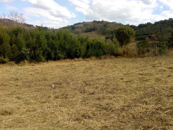 Terreno Sul De Minas (negociável)