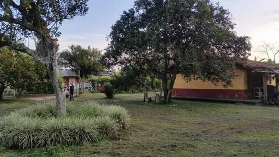 Vendo 5 Cuadras Planas En Quimbaya