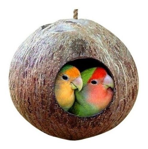 Mascota Real Coco Shell Aves Nido Choza Jaula Alimentador Lo