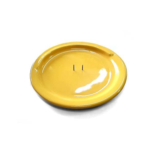 Imagen 1 de 6 de Plato Para Comer - Discapacidad De Losa Con Pinche Central