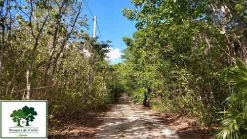 Terreno En Venta Cancun 4,900m2   P2227