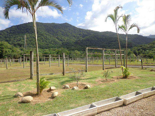 Imagem 1 de 29 de Terreno, Praia Da Lagoinha, Ubatuba - R$ 299 Mil, Cod: 76 - V76