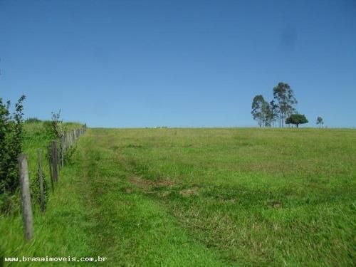 Sítio / Chácara Para Venda Em Álvares Machado, Limoeiro - 02654.001_1-652768