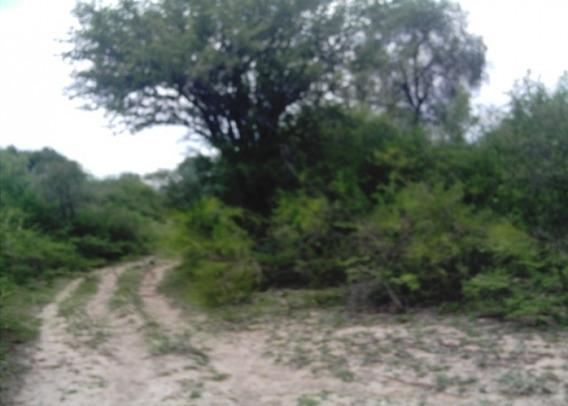 Campo En Santiago Del Estero Se Permuta Por Dptos Autos. Se Financia El 50% Y El Resto A Pagar En 1 O 2 Aã¿os