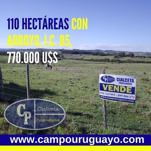 Campo De 110 Hectáreas, Con Arroyo, Buen Acceso