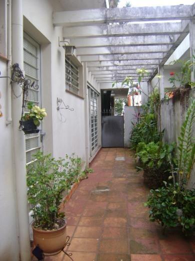 Casa Comercial Para Locação, Castelo, Campinas - Ca0409. - Ca4347