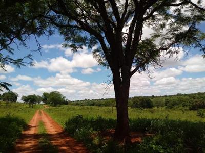 Sítio À Venda, 242000 M² Por R$ 390.000 - Zona Rural - Aparecida Do Taboado/ms - Si0011