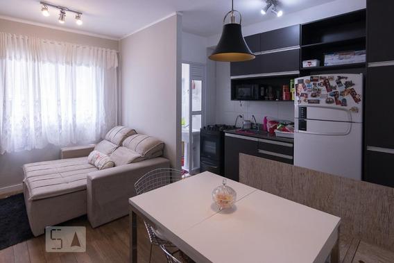 Apartamento Para Aluguel - Bom Retiro, 1 Quarto, 33 - 893011697
