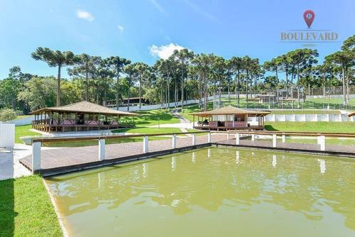 Imagem 1 de 18 de Chácara À Venda, 11734 M² Por R$ 1.200.000,00 - Santa Gema - Colombo/pr - Ch0003