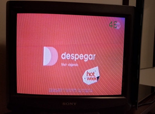 Televisor Trinitron 21 Pulgadas Con Control Remoto Y Manual.