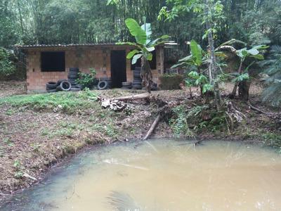 Terreno Com Construção, Lago, Nascente De Água Aceito Troca