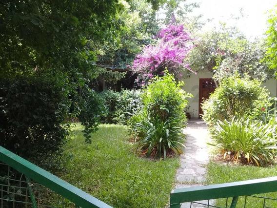 149 Y 415. Casa Con Dos Dormitorios En Alquiler, Arturo Segui.-