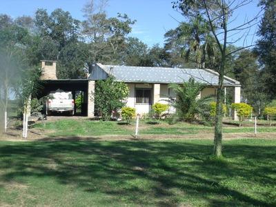 Campo Agricola-ganadero Zona Palo Santo