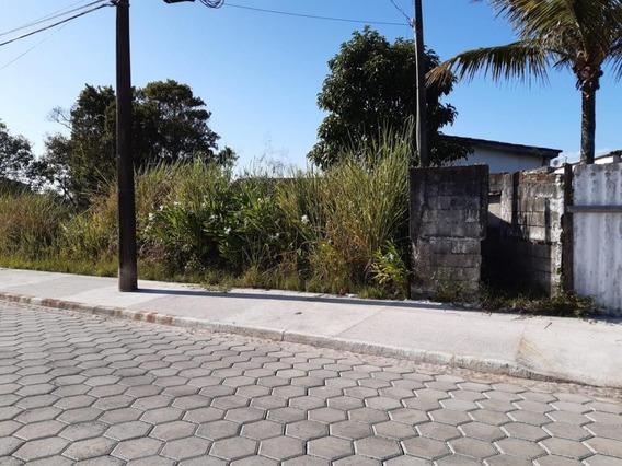 Ótimo Terreno Em Frente A Pista.rua Calçada Ref. 0615 M H