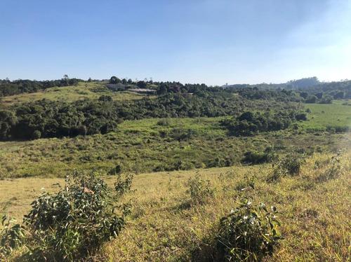 Imagem 1 de 14 de D07- Terrenos Próximo A Cidade