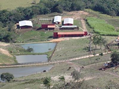 Chácara Em Mumbuca, Passos/mg De 98m² À Venda Por R$ 2.400.000,00 - Ch118183