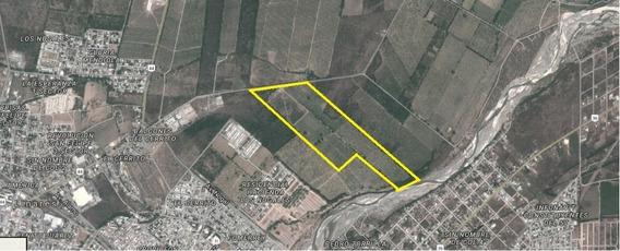Terreno 30has Para Urbanizar Linares, Nuevo Leon