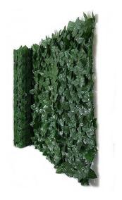 Muro Inglês Pronto 2 X 1 Metros Heras Hera Ficus Vegetal