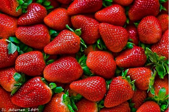 Solución Hidroponica Nutritiva Sales Para 1000 Litros