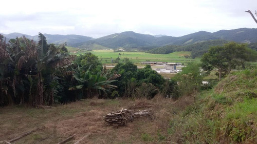 Imagem 1 de 15 de Terreno Com 524m2 No Centro De Santo Amaro Da Imperatriz - Te0713