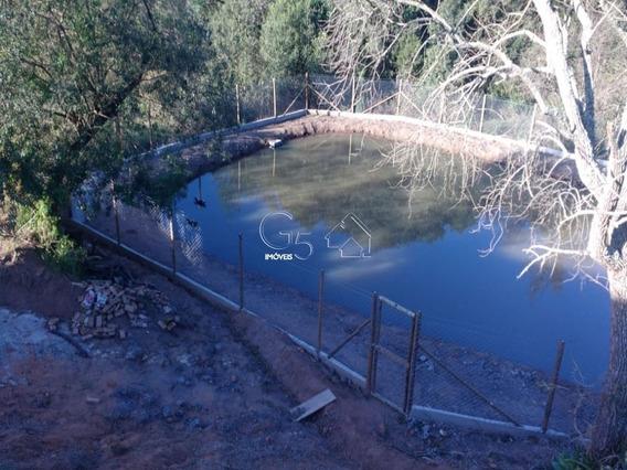 Sítio Para Venda Em Jarinú, At - 31000,00 M2, Com Galpão Bem Construído Para Depósito - St00002 - 32625954