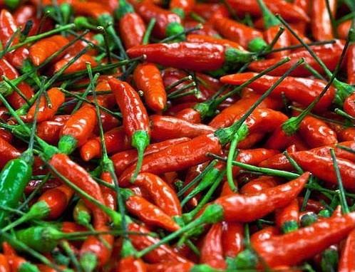 20 Sementes De Pimenta Malaguetinha Capsicum Chili