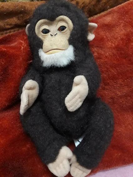 Newborn Chimpanze Fur Real