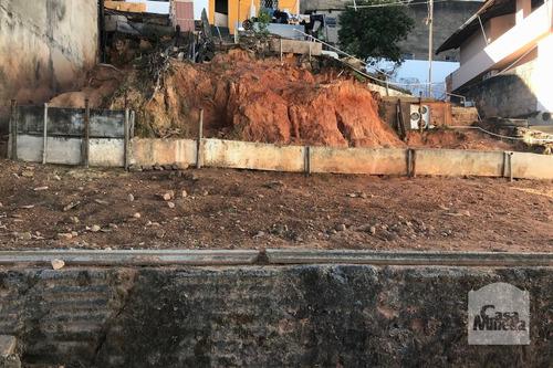Imagem 1 de 3 de Lote À Venda No Ipiranga - Código 248390 - 248390