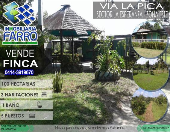 Venta De Finca Via La Pica Ve01-0215lp-ym