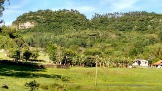 Sítio Em Zn Rural - Cs36006190