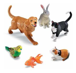 Mascotas Domésticas Gigantes, Gato, Perro, Conejo, Con...