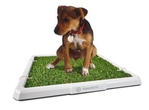 Bandeja Sanitaria C/rejilla Para Mascotas Cachorros 40% Off!