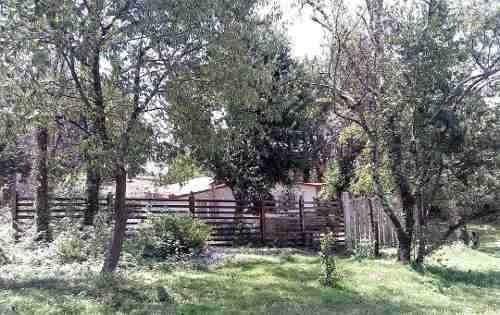 Hermosa Cabaña En Bosque Tres Marías A 40 Min Cd De México