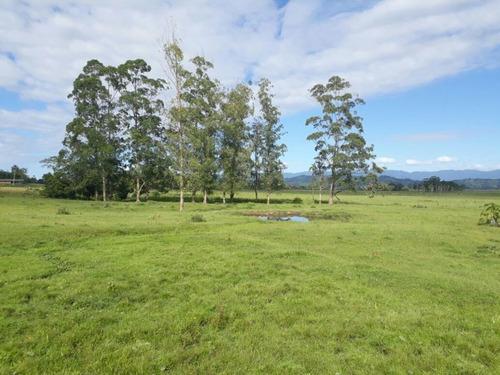 Imagem 1 de 18 de Fazenda À Venda, 63000 M² Por R$ 2.500.000,00 - Campo Bonito - Torres/rs - Fa0002