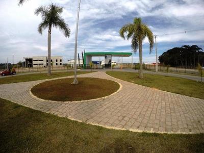 Terreno Residencial À Venda, Eucaliptos, Fazenda Rio Grande. Te0137 - Te0137 - 32837344