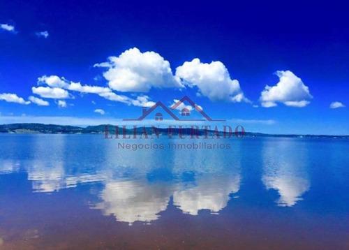Campo Con 1.400 M De Costa Sobre Laguna Del Sauce, Agrícola Ganadero- Ref: 1063