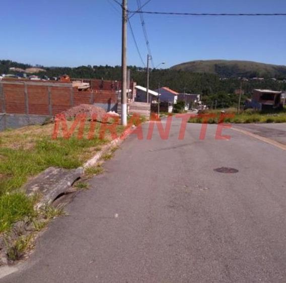 Terreno Em Serra Da Cantareira - São Paulo, Sp - 326151