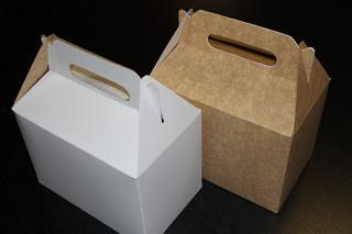 Caja De Cartón Picnic 21x13x15 Cm