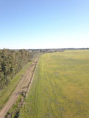 Video Foto Aerea Con Drone,inmobiliarias Construccion Campo