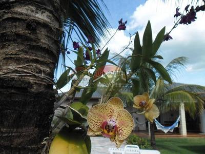 Casa Residencial À Venda E Locação, Centro, Jardinópolis - Ca5393. - Ca5393