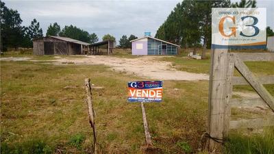Terreno Residencial À Venda, Laranjal, Pelotas. - Te0348
