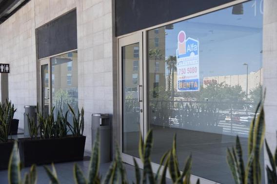Local Comercial En Renta Torreón El Fresno