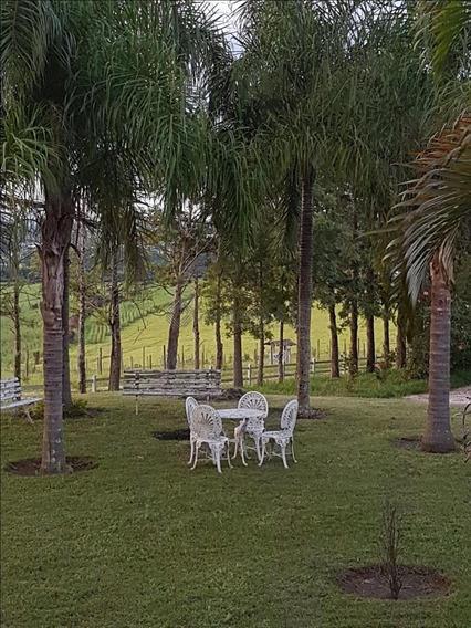 Sítio Com 3 Dormitórios À Venda, 133100 M² Por R$ 1.800.000 - Das Congonhas - Sarapuí/sp - Si0099