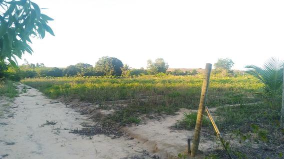 Terreno 50 X 100 M (5000 M2 - Zona Rural)