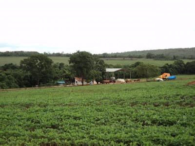 Fazenda Para Venda Em Ipameri - 141